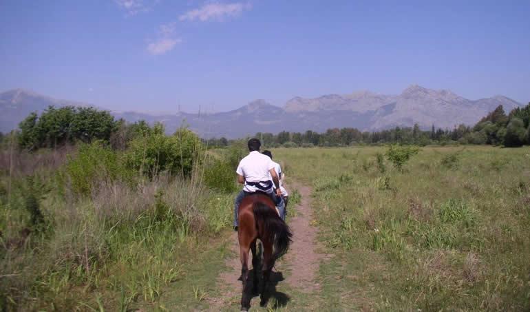 Everest Horse Safari