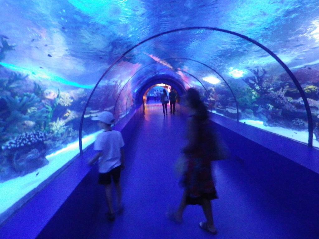 Antalya Aquarium - Antalya Living